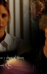 Spike-s-Heaven-buffy-the-vampire-slayer-2461091-1024-768